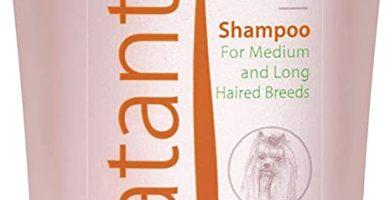 Artero - Champú para Perros hidratante especial yorkshire terrier
