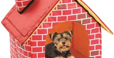 Cama de Felpa para Perro Yorkshire, Plegable, Aspecto Real, para casa y Chimenea, cómoda y compacta, Cama Suave para Perros y Gatos de tamaño pequeño
