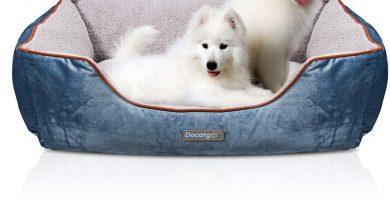 Camas para YORKSHIRE TERRIER,Cama para Perros / Mascotas con Suave cojín Desmontable
