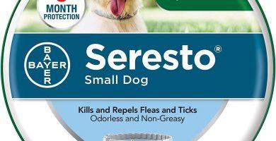 Collar para pulgas y garrapatas Seresto para Perros