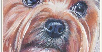 Felpudo Yorkshire Terrier Alfombrilla de Entrada Antideslizante de Caucho Natural para Interiores y Exteriores Puertas Exteriores