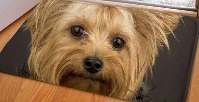 Felpudo para Puerta Yorkshire Terrier - Suave - Hogar Decorativo Durable Lavable Antideslizantes
