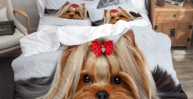 Juego de Funda de Edredón,Closeup Retrato de Yorkshire Terrier Perro acostado sobre Fondo Blanco