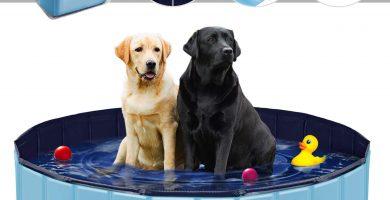 Piscina para Perros 160x30 CM Plegable Ideal para un Verano azul
