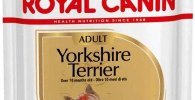 ROYAL CANIN Mini Yorkshire Paquete de 12 x 85 gr
