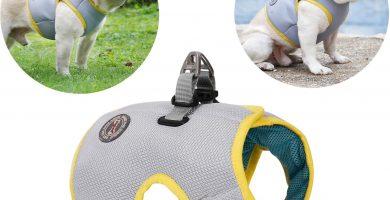 Refrescante Arnés Malla de Verano para Caminar Chaleco Fresco Arnés Ajustable para Perros pequeños Correr Caminar Escalar montañas