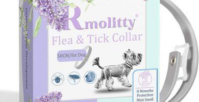 Rmolitty Collar Antiparasitos Perros, Tratamiento de pulgas de aceites Naturales para 8 Meses de protección