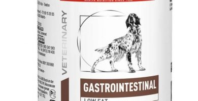 Royal Canin Alimento para Perros Gastro Intestinal Low Fat