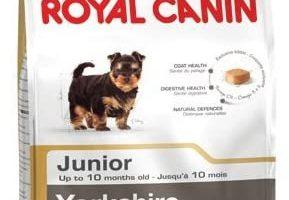 Royal canin Yorkshire junior - Pienso para Yorkshire joven 1,5Kg