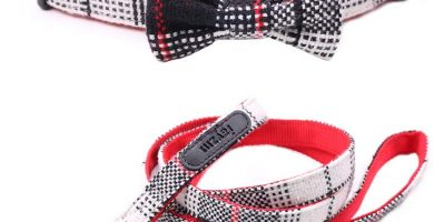 Set de Collar de Perro y Correa con Pajarita para Perros Pequeños