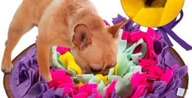 Alfombrilla para perros, alimentación de mascotas, entrenamiento de cachorros y juguetes